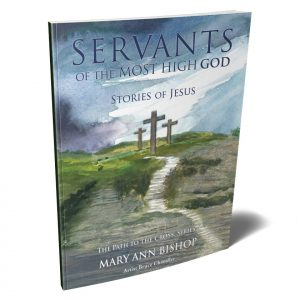 Cover of Stories of Jesus Series 4